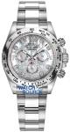 Rolex Cosmograph Daytona White Gold 116509 White MOP Diamond Oyster watch