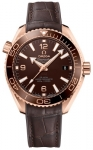 Omega Planet Ocean 600m Co-Axial Master Chronometer 39.5mm 215.63.40.20.13.001 watch