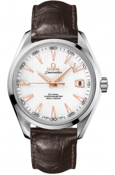 Omega Aqua Terra Automatic Chronometer 41.5mm Mens watch, model number - 231.13.42.21.02.002, discount price of £2,905.00 from The Watch Source