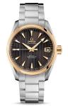 Omega Aqua Terra Automatic Chronometer 38.5mm 231.20.39.21.06.004 watch