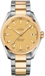 Omega Aqua Terra 150m Master Co-Axial 41.5mm 231.20.42.21.08.001 watch