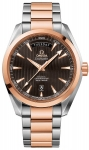 Omega Aqua Terra 150m Co-Axial Day Date 231.20.42.22.06.001 watch
