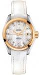 Omega Aqua Terra Ladies Automatic 30mm 231.23.30.20.55.002 watch
