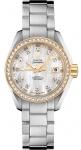 Omega Aqua Terra Ladies Automatic 30mm 231.25.30.20.55.004 watch