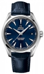 Omega Aqua Terra 150m Master Co-Axial 41.5mm 231.13.42.21.03.001 watch