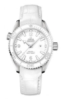 Omega Planet Ocean 600m 37.5mm 232.33.38.20.04.001 watch