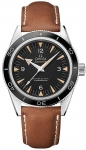 Omega Seamaster 300 Master Co-Axial 41mm 233.32.41.21.01.002 watch