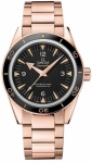 Omega Seamaster 300 Master Co-Axial 41mm 233.60.41.21.01.001 watch