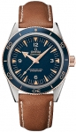 Omega Seamaster 300 Master Co-Axial 41mm 233.62.41.21.03.001 watch