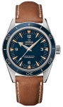 Omega Seamaster 300 Master Co-Axial 41mm 233.92.41.21.03.001 watch