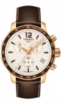 Tissot Quickster T0954173603702 watch
