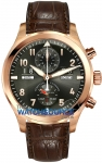 IWC Pilot's Watch Spitfire Perpetual Calendar Digital  Date Month iw379103 watch
