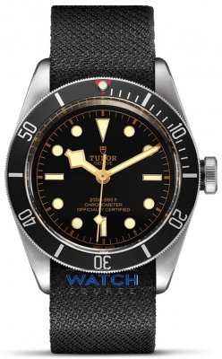 Tudor Black Bay 41mm m79230n-0005 watch
